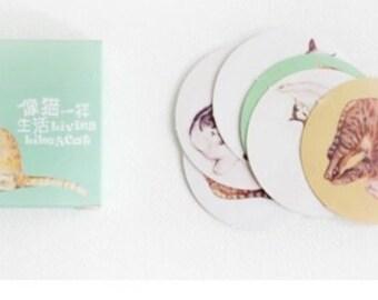 Bel gatto Label - totale 40 adesivi
