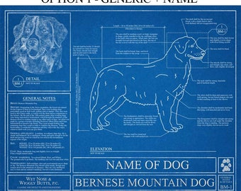 Personalized australian cattle dog blueprint australian personalized bernese mountain dog blueprint bernese mountain dog art bernese mountain dog wall art bernese mountain dog gift malvernweather Gallery