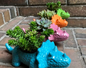 Triceratops Planter