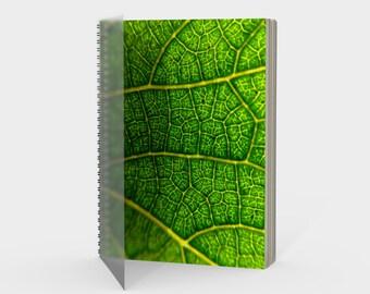 cells -- notebook (large&spiral)