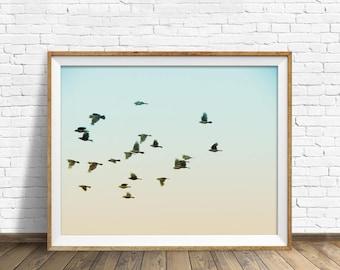 "instant download printable art, printable wall decor, printable wall art, birds, large art, large wall art, photography prints - ""Flock"""
