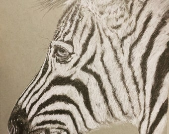 Original Zebra Art - in black and white