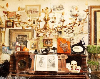 Curiosities in the Apothecary Shop - 5 Postcard Set