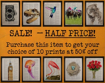 Buy 10 prints for half price - Your choice - Sale - Discounted set - dictionary art prints - da901