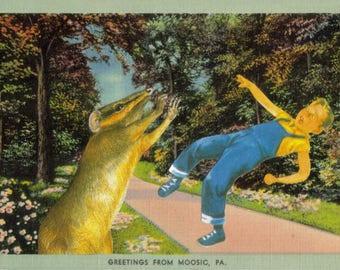Original Collage Art, Funny Animal Artwork