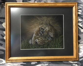 Original Lion pastel done on black velour paper.