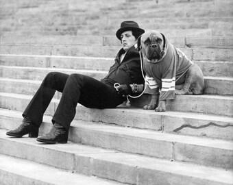 Rocky, Rocky Balboa, English bulldog,Philadelphia, steps rocky, Rocky, sylvester stallone, Boxing , Rocky Balboa,