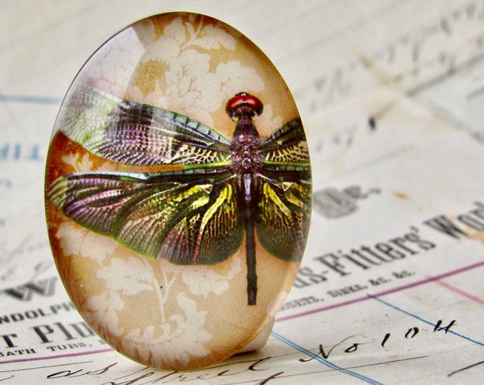 Dark wing dragonfly, wallpaper background, 40x30mm or 25x18mm, handmade glass oval cabochon, insect, bug, garden, Winged Wonders collection