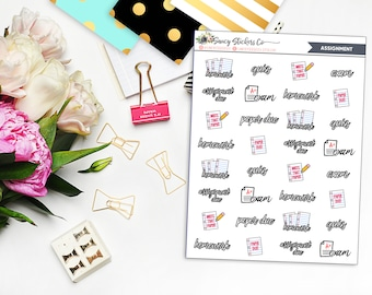 Assignment College/School Planner Stickers | for use with Erin Condren Lifeplanner™, Happy Planner