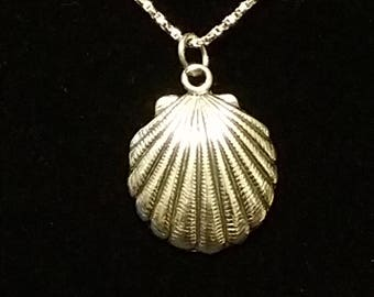 Solid Sterling Silver Sea Shell necklace with 20 inch chain and lobster clasp.