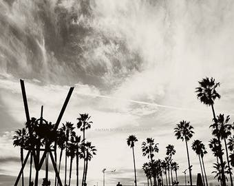 photography, Venice Beach photo, black and white photograph, palm trees, LA, Los Angeles, California beach, boys room decor, gray, for him