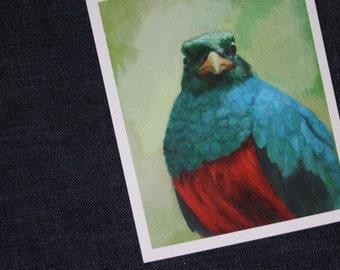 Resplendent Quetzal - Giclée Print of original Acrylic Painting by Spring Hofeldt
