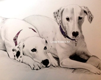 Custom Pet Portrait Graphite Pencil 11x14