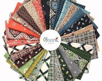 WINTER WALK Fat Quarters, Fabric Bundle, Denise Schmidt, Quilt Fabric, Quilting Cotton, Free Spirit Fabric, Modern Farmhouse, Plaid, 31 FQs