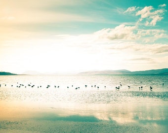 birds photography beach photography nautical decor sunset photography 8x10 24x36 fine art photography ocean clouds sky gold aqua teal large