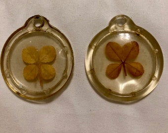 Collectible 4 Leaf Clovers set in plastic - 4 Leaf Clovers - Collectibles - Craft Projects