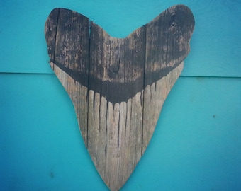 Megalodon tooth  Upcycled fence wood  Sharktooth