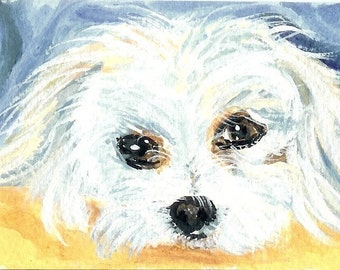 Aceo  Maltese puppy dog painting reproduction