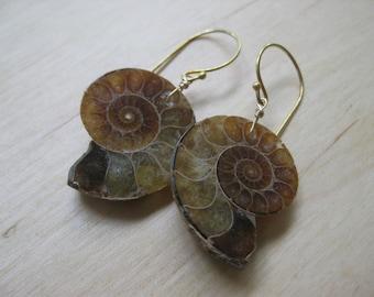 Insouciant Studios Large Ammonite Earrings