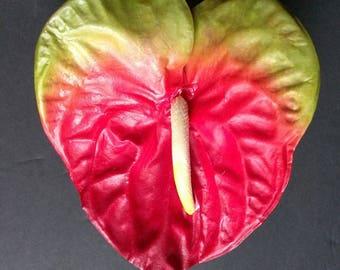 """27"""" Anthurium stem"""