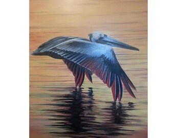 "8"" x 10"" Pelican at Sunset print"