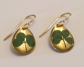 Real Four Leaf Clover Drop Earrings