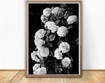 Boho Decor, Digital Prints, Instant Download, Black And White, Floral, Bohemian, Roses, Photography, Rose Printable, Digital Art