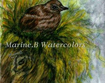 Watercolor Bird Art Print 8 x 10 in