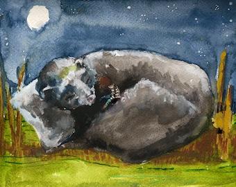 Animal Illustration Art Print - Ferret Illustrations, Giclee Art Print, thepaintedgrove
