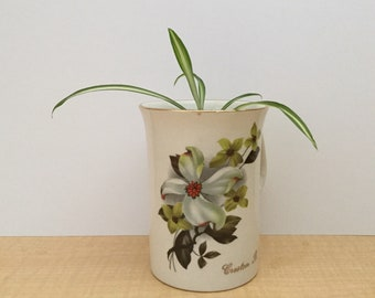 Spider Plant in a Tea Cup Planter Kit - Chlorophytum comosum