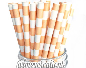 PEACH Paper Straws, 25 Peach Circle Paper Straws, Cake Pops, Peach Weddings, Birthday Party, Peach baby shower, Diy Flags