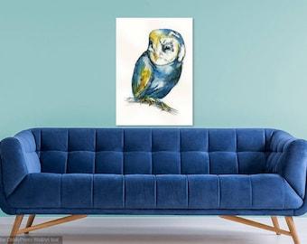 Colourful Barn Owl
