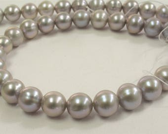 8-8.5 mm AAA Gray Semi-Round / Potato Freshwater Pearls, Genuine Pearl Beads, Silver Gray Freshwater Pearl, Cultured Pearl (535-PGY0885)