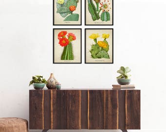 Cactus Botanical Print Set, Botanical Four Print Set, Home Decor, Vintage  Illustrations, Cactus Art Reproduction, Cactus 4 Print Set m010