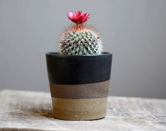 Handmade Planter, Spring, Succulent Planter, Ceramic Planter, Indoor Planter, Pottery Planter, Small Planter, Cactus Planter,Modern Planter