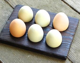 Chicken Egg Holder | Wood Egg Storage | Rack Collector | Shou Sugi Ban