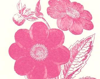 6 Pink Flower Letterpress Cards