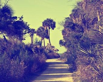 Palm Tree Wall Print, Palm Trees, Beach Photography - Coastal Photograhy of Charleston SC, Cottage Decor, Coastal Decor, Living Room Decor -