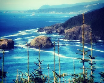 Oregon Coast archival print , wall art for home or office, hwy101 scenic image