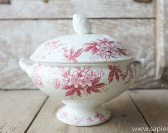 Rare antique French white with red decor 'Anemone'  ironstone tureen with artichoke on the lid by st Amand in excellent condition