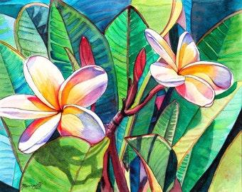 Kauai Plumeria Garden print 8x10 from Kauai Hawaii