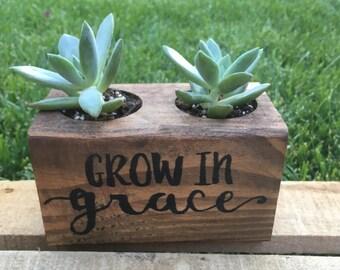 Double vase pour plante grasse