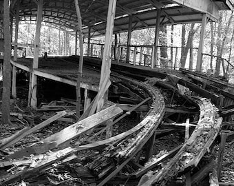 Abandoned Roller Coaster in Woods Photo Print