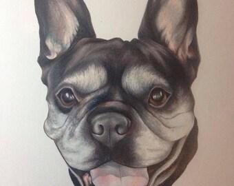 Made-to-Order, Custom Pet Portraits