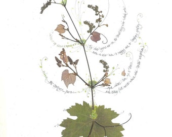 Wines of Celebration--print of real leaves and calligraphy