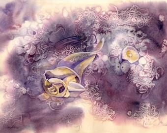 Fantasea 51