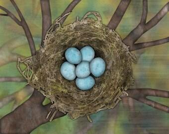 "Print - ""Nest"""