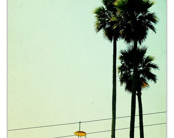 photography, mid century carnival, art,  orange mustard, honey gold, mad men, summer, Boardwalk Palms, 24x16 photograph