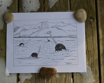 Pen and Ink Drawing of Narwhals