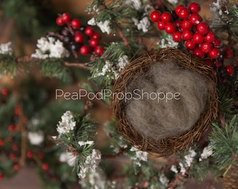 Newborn Digital Background - Digital Winter Nest Instant Download